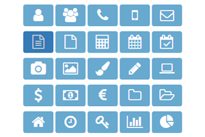 A Set of Icons for the Web